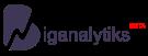cropped-Logo-main-Biganalytiks-beta-1.png